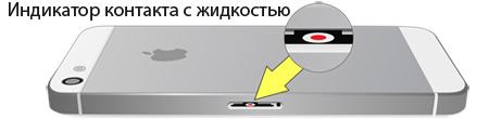 Ремонт iPhone 5/5c/5s после попадания воды