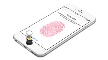 Замена кнопки Home iPhone 6+/6S+